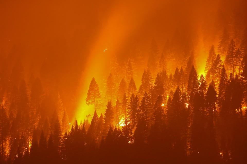 Bosbranden in de VS.