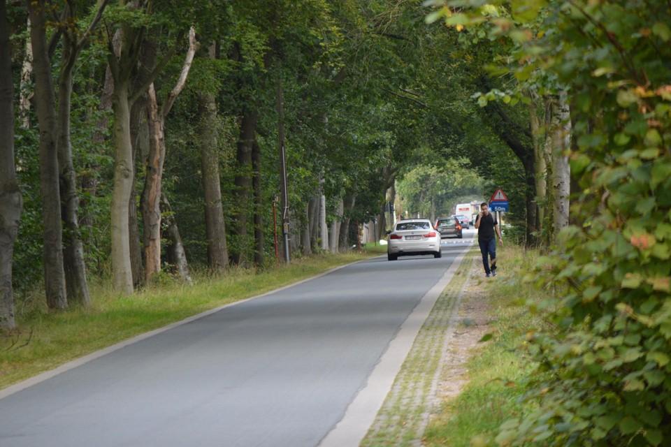 De betonnen grasdallen in de Lange Dreef. Deze wandelaar stapt er ook naast, en niet over.