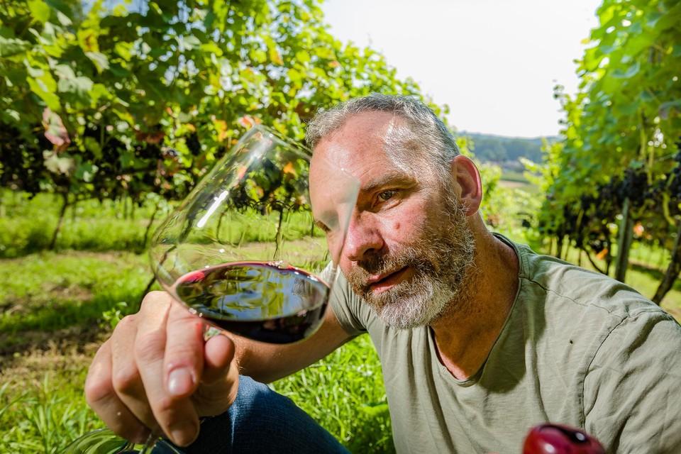 Patrick Nijs uit Wilrijk heeft een wijnmakerij in het centrum van Antwerpen en enkele kleine wijngaarden verspreid over Vlaanderen.