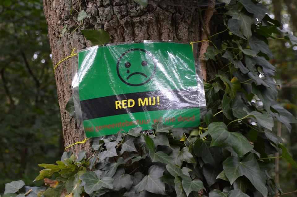 De bordjes aan de bedreigde bomen.