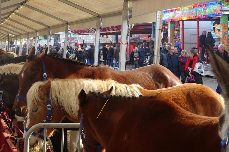 Houtem Jaarmarkt is elk jaar een groot volksfeest. Behalve dit jaar.