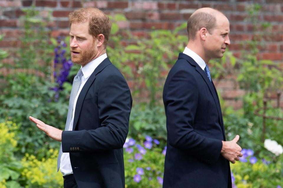 Prinsen Harry en William afstandelijk tijdens de onthulling van het standbeeld van hun moeder, prinses Diana, op 1 juli.