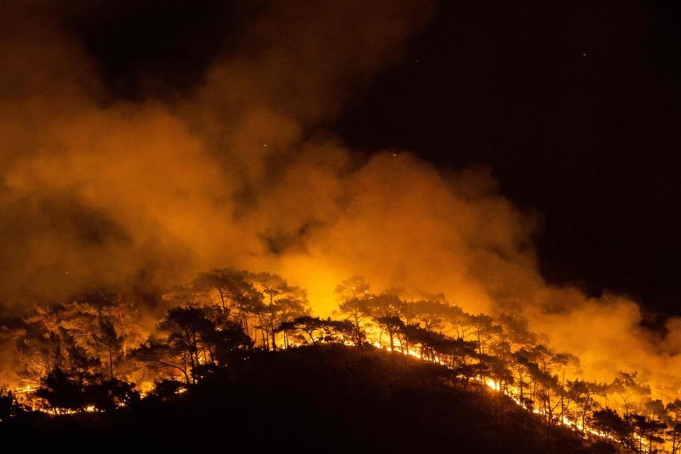 Er woeden stevige bosbranden in Italië en Turkije