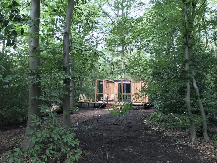 De boscabin. Elk logeerplekje gaat op in de natuur en biedt voldoende privacy.