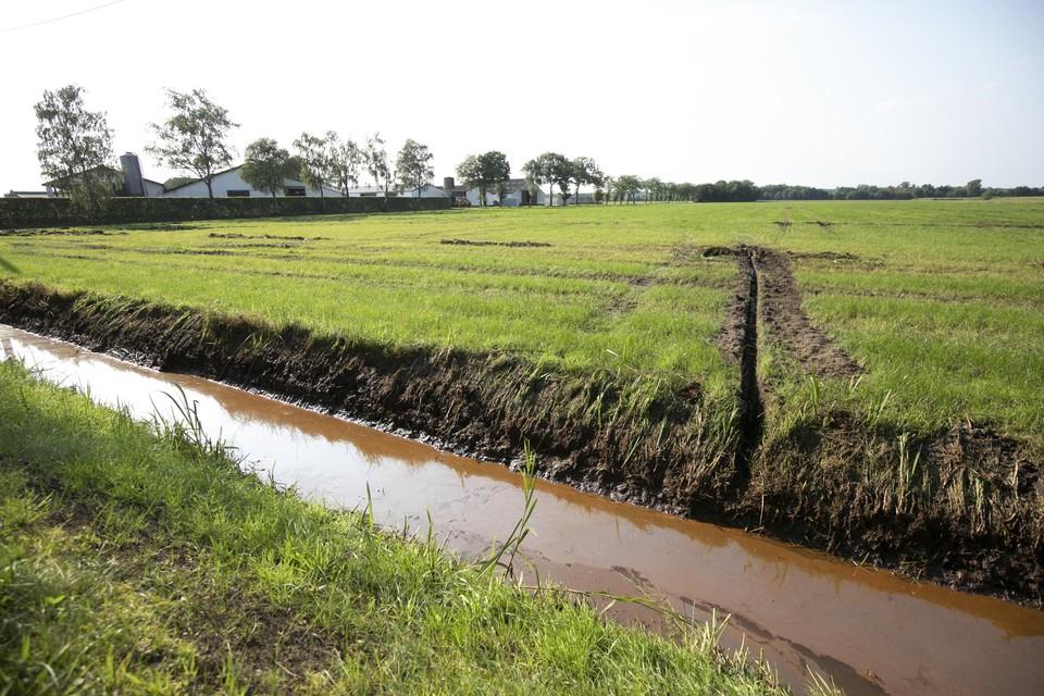 De landbouwers in de Zegge in Geel werden zwaar getroffen door de overstromingen van afgelopen maand.
