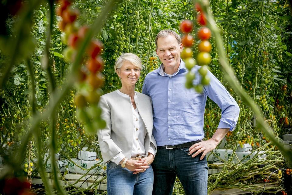 Petra Veldman en Paul Stoffels willen hun tomatenbedrijf graag uitbreiden met een serre in Hoogstraten.