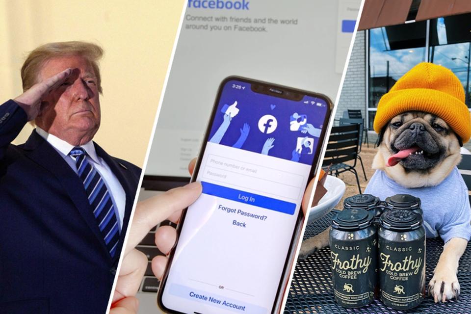 Voor Donald Trump verbannen werd, golden er andere regels voor de voormalig president. Doug the Pug heeft nog altijd zijn privileges op Instagram.