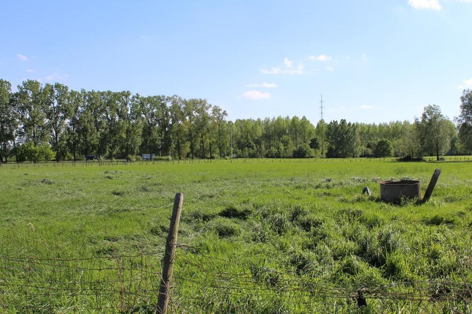 De Stad Gent wil 140 ha landbouwgrond verkopen.